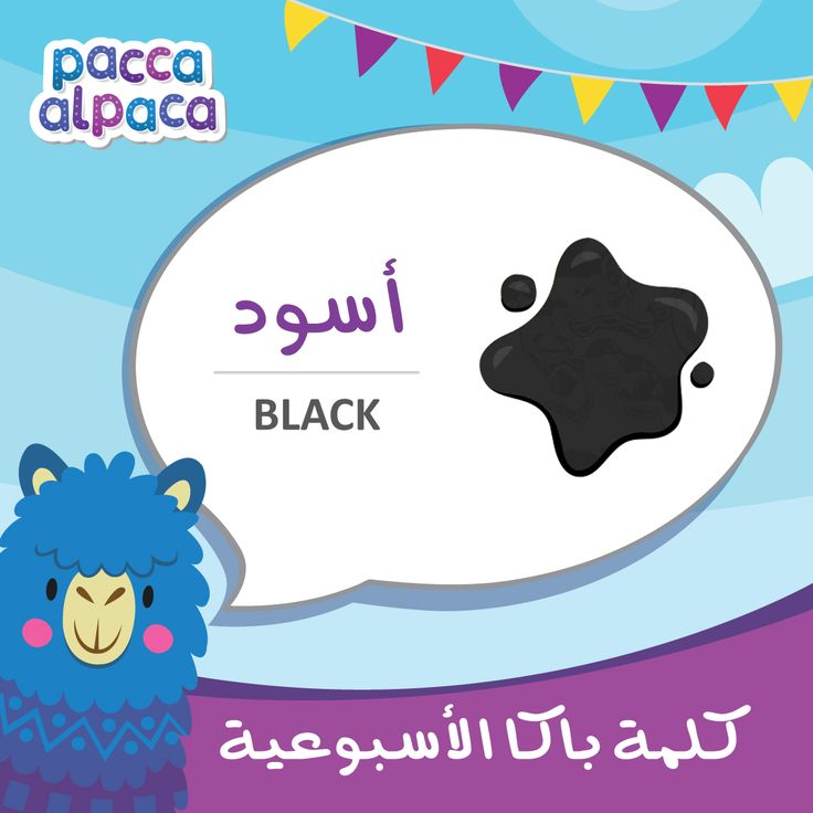 This week Pacca learns how to say black in Arabic!