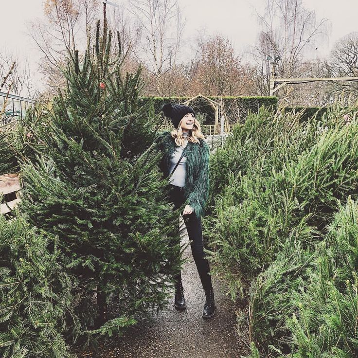 """Polubienia: 50.4 tys., komentarze: 159 – Zoella (@zoella) na Instagramie: """"When you blend in with your tree... """""""