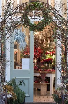 interior flower and herb shop - Yahoo Image Search Results