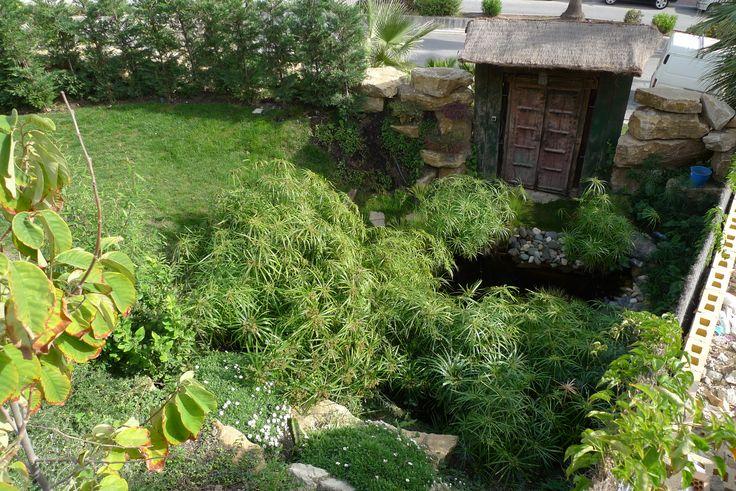 Reforma en jardín. Puerta rústica de entrada trasera a vivienda, cascada y pantas ornamentales. #jardín #césped #reforma #decoración #coberti