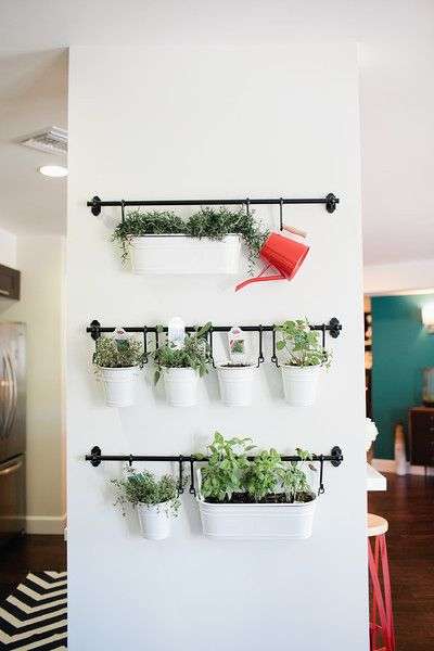 Create a hanging garden with metal tins, hooks, and towel bars! put between kitchen cabinets using plumbing pipes instead of towel bars