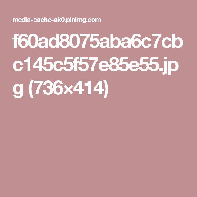 f60ad8075aba6c7cbc145c5f57e85e55.jpg (736×414)