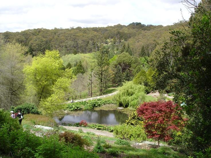 Mount lofty botanical gardens botanic gardens of the for Adelaide gardens