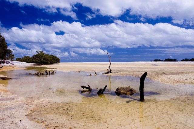 Fraser Island is a fantastic location. It's actually believed to be the largest sand island in the world.#favorite place