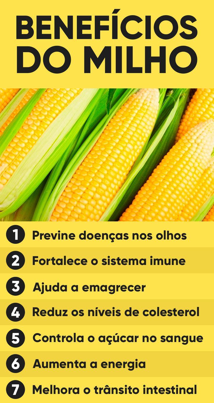 O milho traz benefícios para a saúde como proteger a visão, por ser rico nos antioxidantes luteína e zeaxantina, e melhorar a saúde intestinal e emagrecer, devido ao seu alto teor de fibras que regulam o funcionamento do intestino e aumentam a sensação de saciedade.