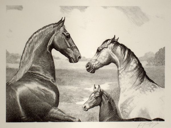 This lithograph immortalizes one of the greatest families in Saddlebred history. WC CH King's Genius, shown here with his dam and sire, Princess Eugenia (BHF) and WGC Bourbon King, who was the singular show stallion and sire of his time.