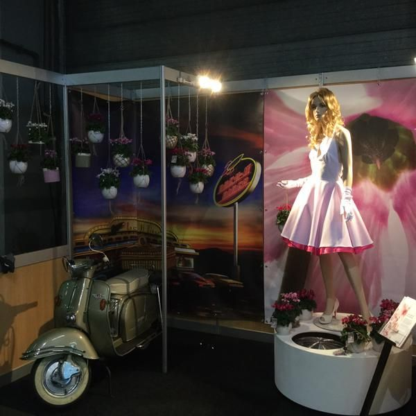 cyclaam Super Serie Petticoat at Autumn Fair Flora Holland by Marc van Heijningen (@Marcthings) | Twitter