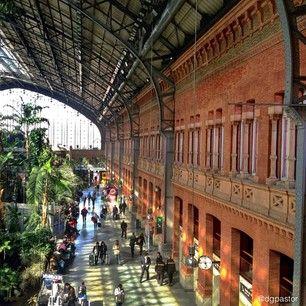 Estación de Atocha, Madrid (Spain). Photo by @Dolores Glez Pastor