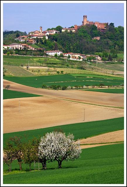Camino, Alessandria - Primavera in Monferrato Piemonte