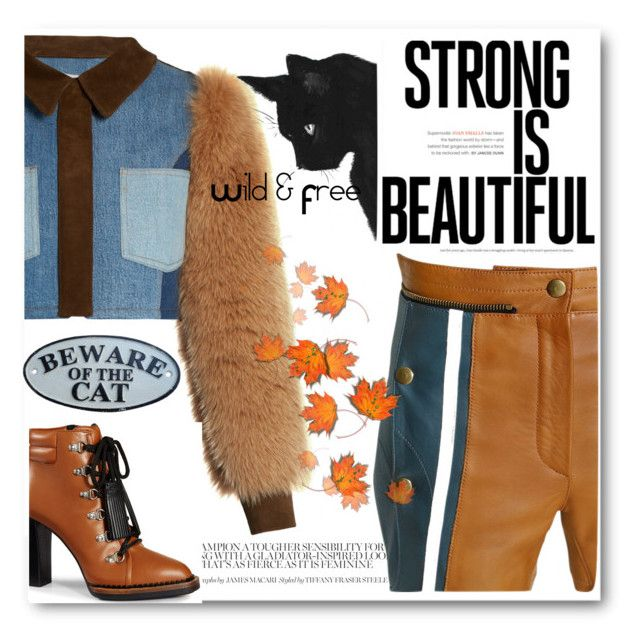 """Winter Warrior"" by deeppurplesea on Polyvore featuring Sonia Rykiel, Tod's and Chloé"