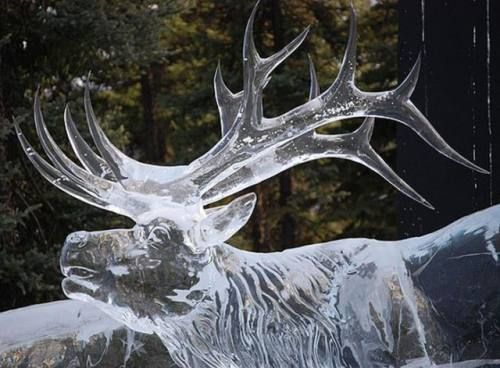Arte Ghiaccio Animali (47) - Amazing Ice Sculptures