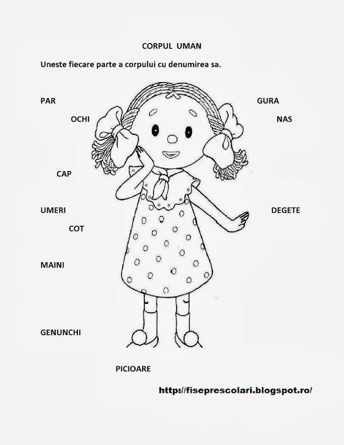 Corpul Uman/ Obiecte de ingrijire personala - Fise de lucru pentru copiii din scola si gradinita | Fise de lucru - gradinita