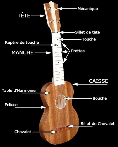 17 Best Images About Instruments
