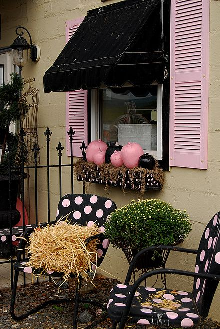 Love the pink and black pumpkins