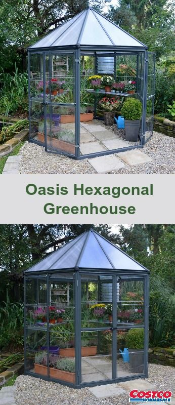 308 best Greenhouses images on Pinterest | Conservatory, Green ... Large Hexagonal Greenhouse Designs on hexagon geodesic dome greenhouse, spherical greenhouse, rounded greenhouse, sierra greenhouse, rectangle greenhouse, circle greenhouse, domed greenhouse, teardrop greenhouse, geo dome greenhouse, triangular greenhouse, pyramid greenhouse, circular greenhouse, pipe greenhouse, wooden sheds with greenhouse, tubular greenhouse, half round greenhouse, tiny greenhouse, decorative terrarium greenhouse,