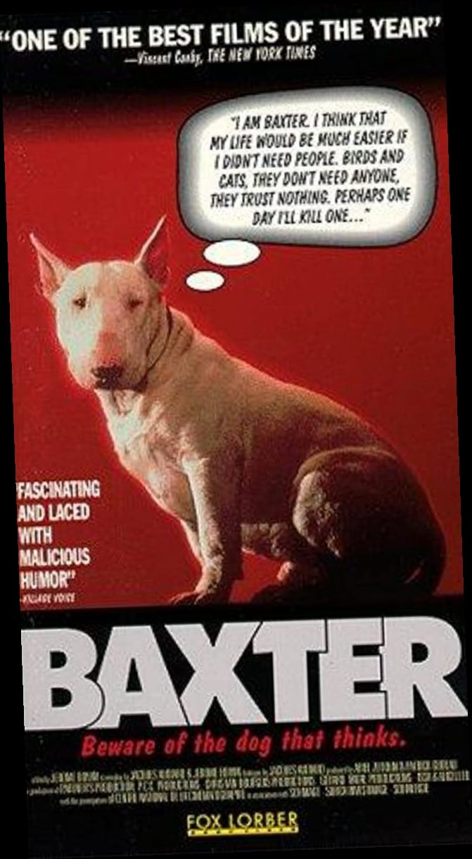 Baxter Film Completo Hd Streaming Italiano Dog Movies The Best Films Comedy Movies