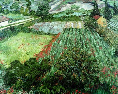 Van Gogh Field with poppies - 1889