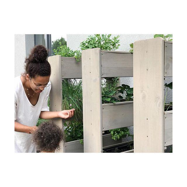 Anzeige Ihr Lieben Ich Habe Euch Alle Unsere Gartenmobel Auf Dem Blog Zusammengestellt Alle Aus Dem Letzten Und Auch Aus Diesem Jahr Bepflanzung Blog Garten