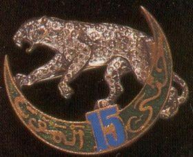 15e régiment de tirailleurs algériens était un régiment d'infanterie appartenant à l'Armée d'Afrique qui dépendait de l'armée de terre française.