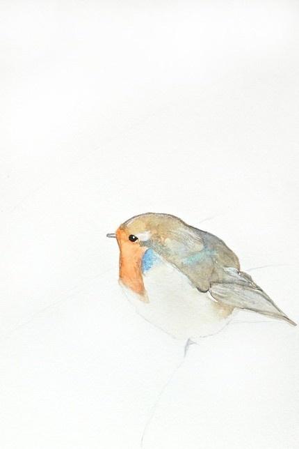 bird watercolor print