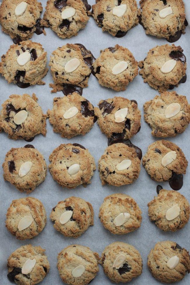 chocolate chip cookies_MG_1375