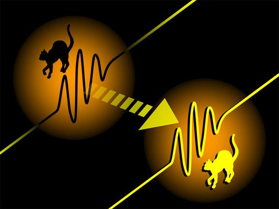 New research bolsters the validity of Schrodinger's Cat, a thought experiment suggesting a cat can be both alive and dead at the same time. (Shown here, an illustration of the quantum teleportation of 'Schrodinger's Cat' wave packets of light from a past physics study.)