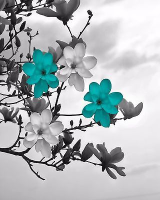 Teal Gray Wall Art/ Modern Floral/Bathroom/Bedroom Home Decor Matted Picture