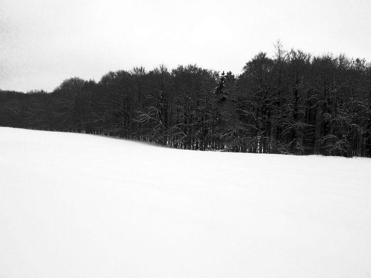alltagsbühne: SNOWY_LANDSCAPE   #photography #Minimalistische Fotografie #black and white