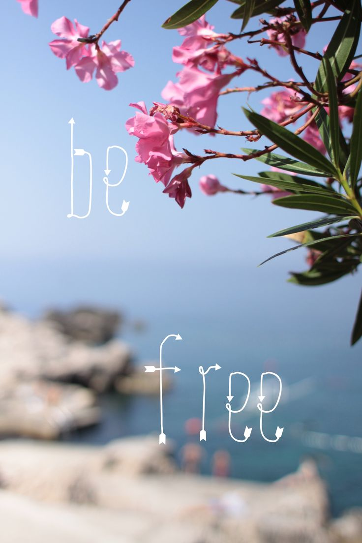 freedom, holiday, summer, quote, quotation, type, inspiration