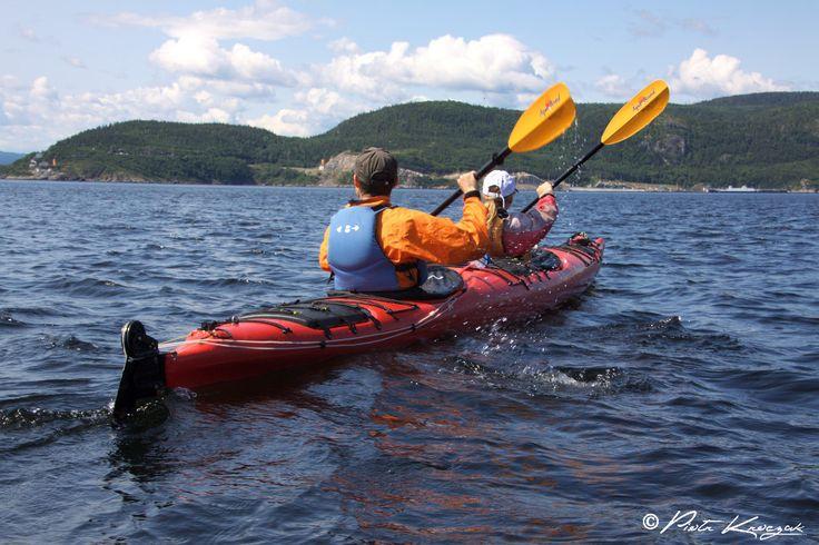 kayak de mer tadoussac #baleine #tadoussac