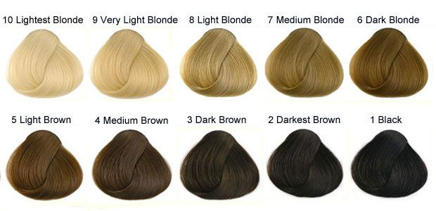March 2017 Call Me Xiao Qi Hair Color Chart Levels Of Hair Color Natural Hair Color