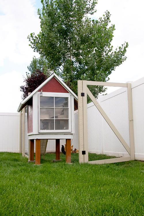 chicken coop with fenced in area: Backyard Chickens, Backyard Heaven, Alex S Chickens, Backyard Chicken Coops, Haven Chicken Coops, Coop Idea, Backyard Haven Chicken, Perfect Backyard
