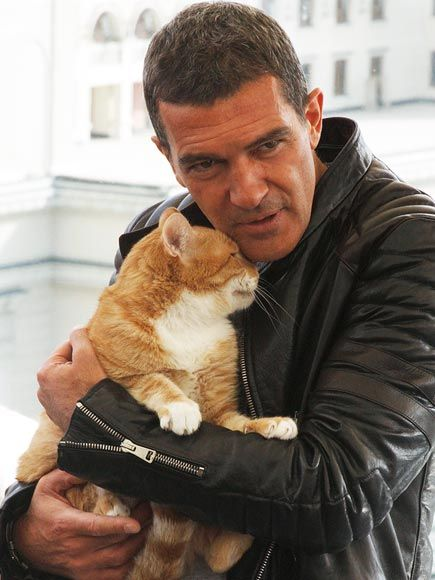 Men with cats. Antonio Banderas with ginger cat. Perhaps inspiration for his Puss n Boots role.
