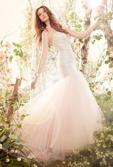 Brides: Jim Hjelm. Blush tulle fit and flare bridal gown, strapless sequins embroidered elongated bodice, chapel train.