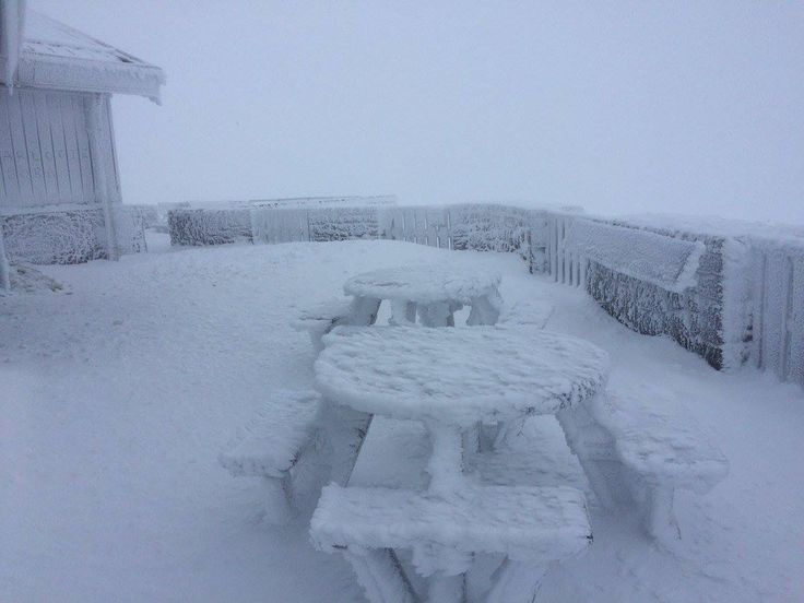 Winter arrived in the Cairngorms this weekend (5th November)