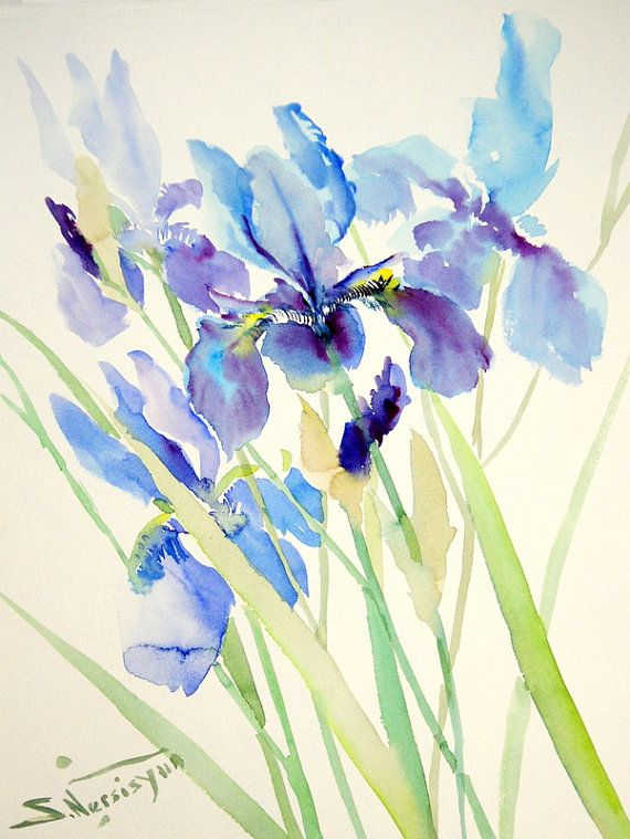 Pale Blue Irises Original watercolor painting 15 X by ORIGINALONLY