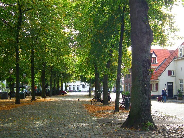 Vischmarkt Harderwijk in de zomer, een heerlijke plek!