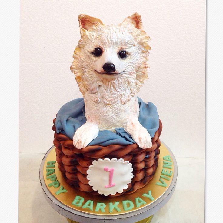 pomeranian birthday cake