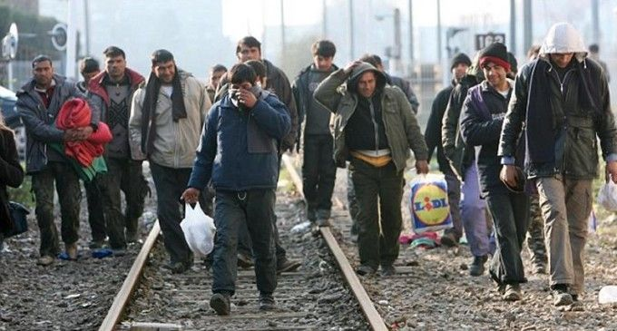 Of the 10,000 Syrian Refugees Obama Just Admitted Into The Country, Only 0.47…