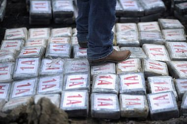 Drug trafficking in Central America wreaking havoc on forests, study finds - CSMonitor.com