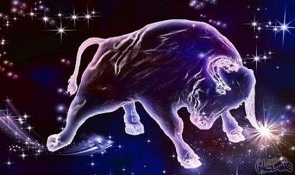 مواليد برج الثور ي عرفون بعدم ميلهم إلى المخاطرة والمغامرة بشؤون الحياة Taurus Bull Taurus Taurus Zodiac