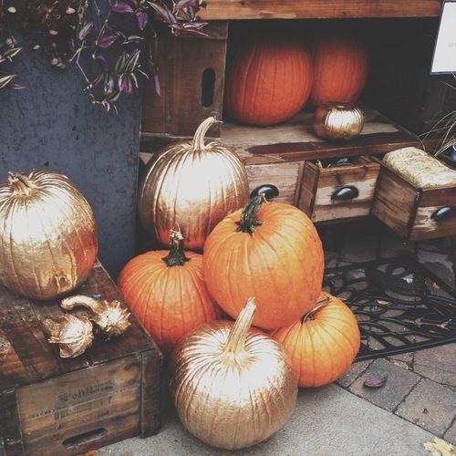 spray painted gold pumpkins