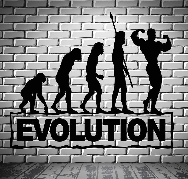 Gym Sports Wall Decal Bodybuilding Fitness Evolution Stickers Art Mural (ig2511) - Tap the pin if you love super heroes too! Cause guess what? you will LOVE these super hero fitness shirts!