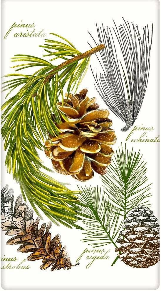Evergreen Botanical Pine Cones 100% Cotton Flour Sack Dish Towel Tea Towel