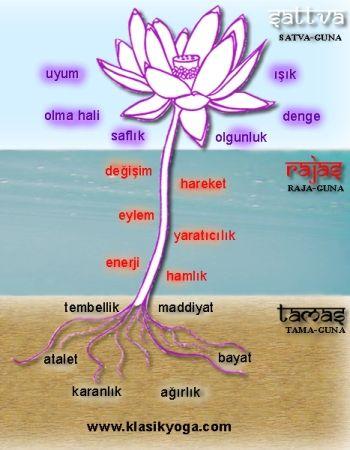 Doğanın 3 temel gücü: Satva, Raja, Tama