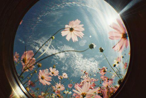 Be-u-tiful.....taken through another lens?