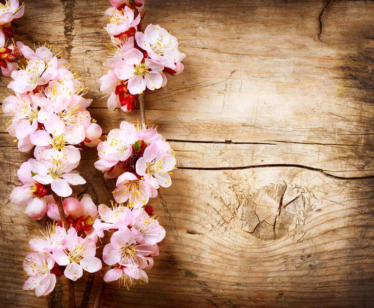 Pink Floral Wreath