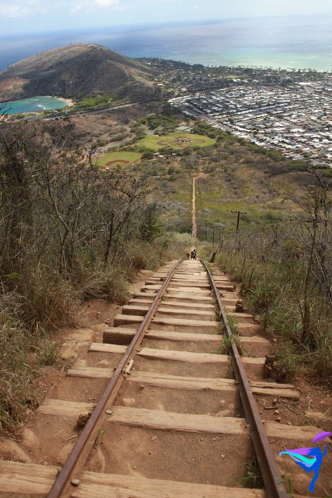Koko Crater Railway Trail - Honolulu, HI.  Been there;  done that! !  Totally worth every difficult step! !  :)