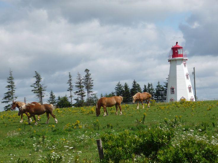 Panmure Island light house - PEI