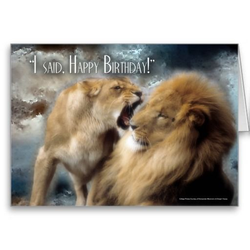 15 Must See Funny Birthday Wishes Pins: Happy Birthday Card Funny Lion And Lioness Couple